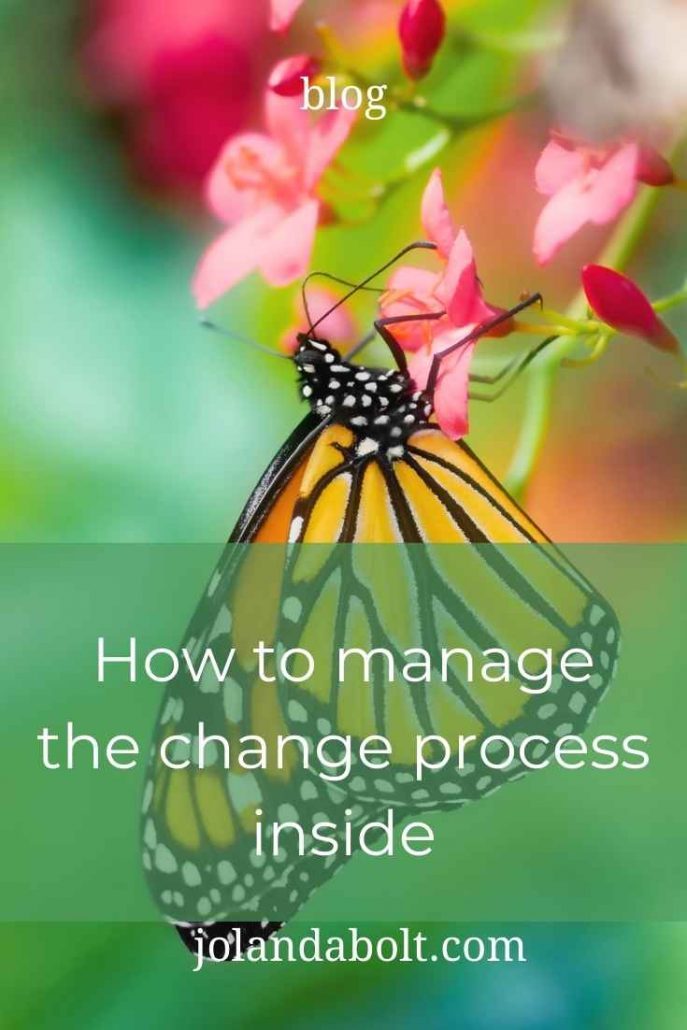 How to manage the change process inside