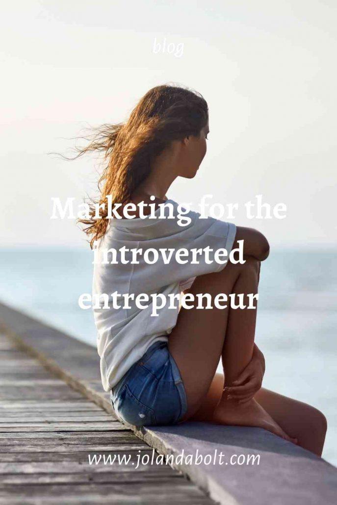 introverted entrepreneur