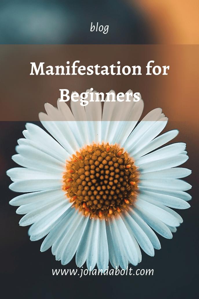 manifesting for beginners